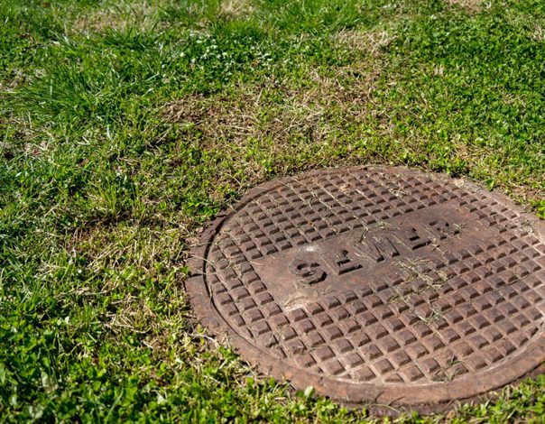 Sewer plate and grass
